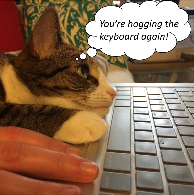 Cats hate keyboard hogs.