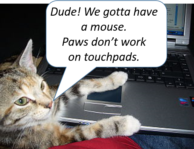 Dude! Paws don't work on touchpads!
